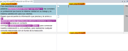 Archivo MQXLIFF abierto en SDL Trados Studio 2014